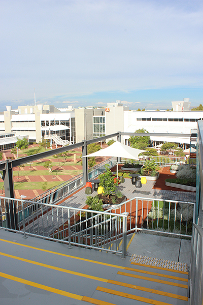 The Centre's rooftop garden